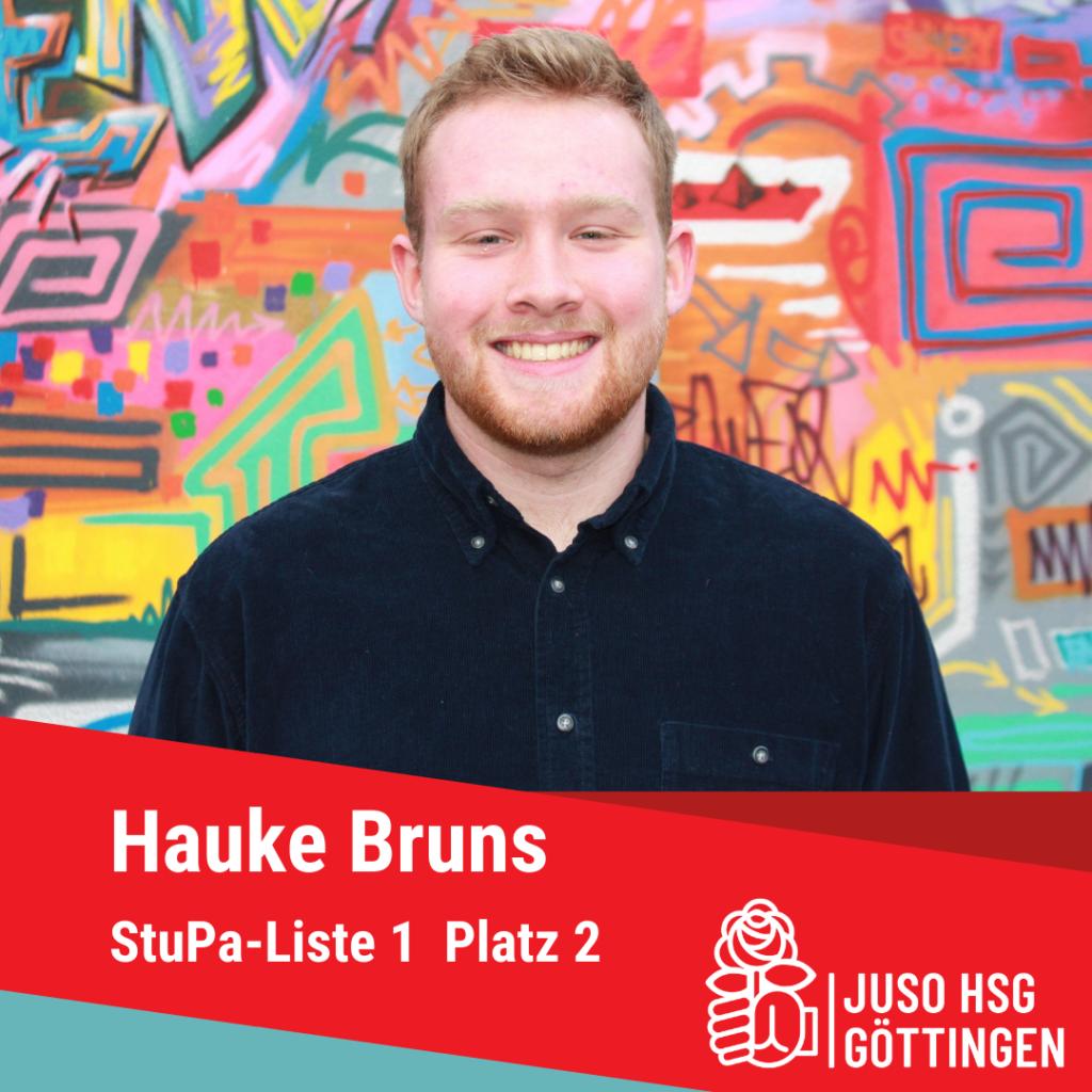 Vorstellung Hauke Bruns